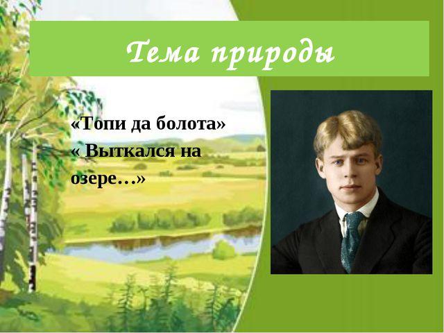 Тема природы «Топи да болота» « Выткался на озере…»