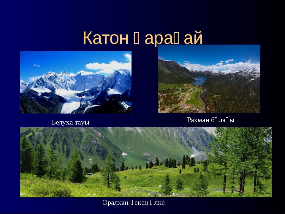 Катон қарағай Белуха тауы Рахман бұлағы Оралхан өскен өлке