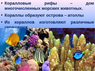 Коралловые рифы – дом многочисленных морских животных. Кораллы образуют остро