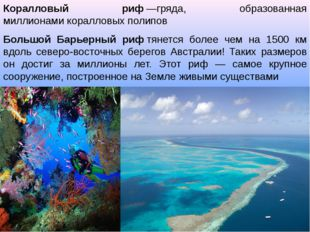 Коралловый риф—гряда, образованная миллионамикоралловых полипов Большой Бар