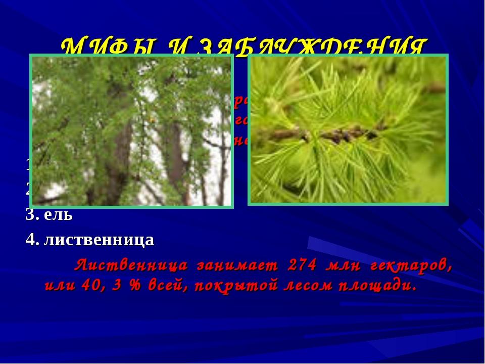 МИФЫ И ЗАБЛУЖДЕНИЯ Какое дерево самое распространенное на территории бывшего...