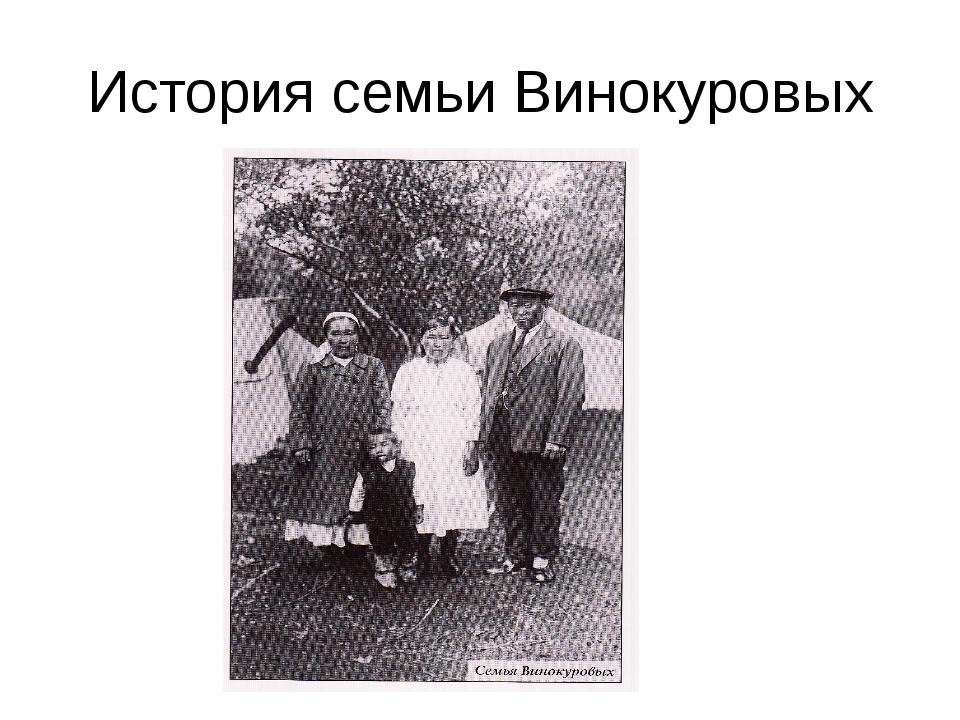 История семьи Винокуровых