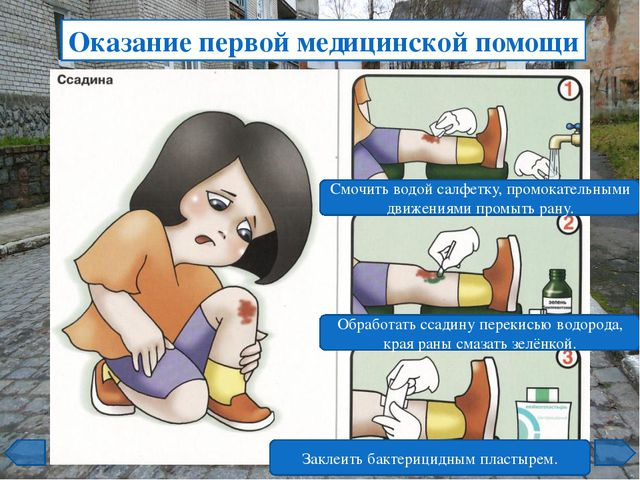 Оказание первой медицинской помощи Промыть рану проточной водой. Смазать рану...