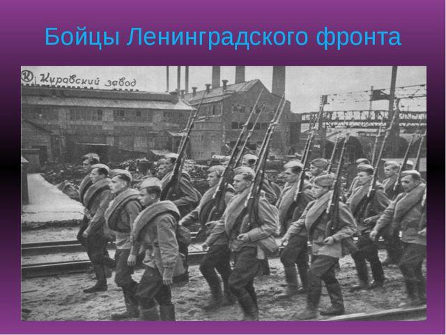 Бойцы Ленинградского фронта