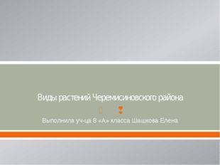 Виды растений Черемисиновского района Выполнила уч-ца 8 «А» класса Шашкова Ел