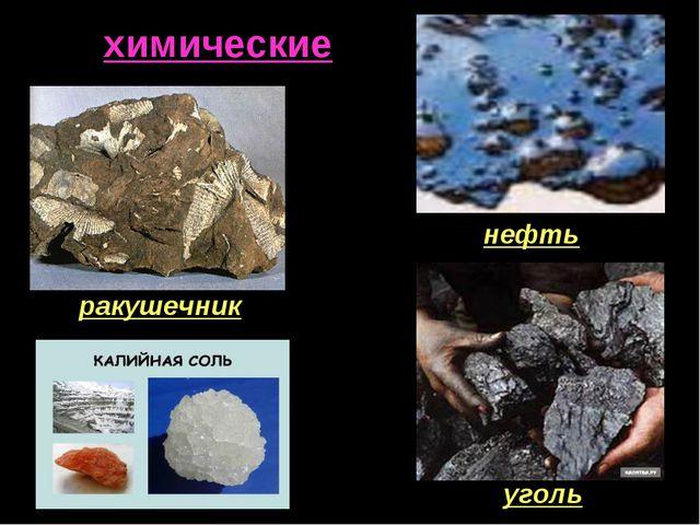 химические ракушечник нефть уголь