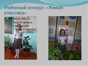 Районный конкурс «Живая классика»