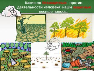 Какие же беззащитные, против деятельности человека, наши защитные лесные поло