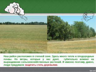 Наш район расположен в степной зоне. Здесь много тепла и плодородные почвы. Н