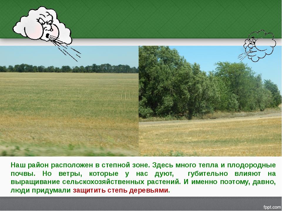 Наш район расположен в степной зоне. Здесь много тепла и плодородные почвы. Н...