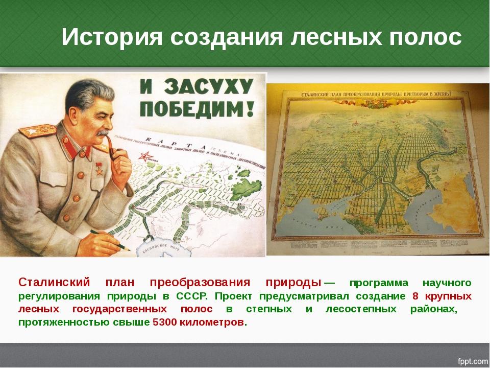 История создания лесных полос Сталинский план преобразования природы— програ...