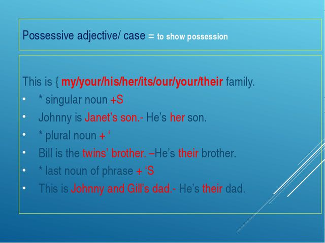Possessive adjective/ case = to show possession This is { my/your/his/her/its...