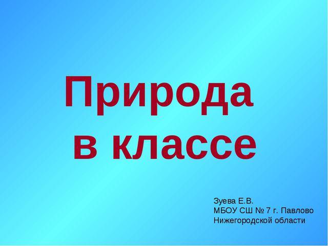 Природа в классе Зуева Е.В. МБОУ СШ № 7 г. Павлово Нижегородской области