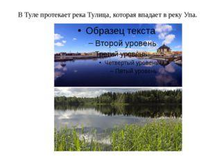 В Туле протекает река Тулица, которая впадает в реку Упа.
