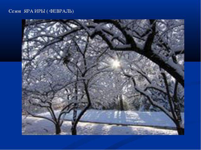 Сезон ЯРА ИРЫ ( ФЕВРАЛЬ)
