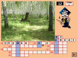 о ж а р Комплекс древесной растительности 12 Ответ о ч а г п 1 2 3 4 5 6 7 8