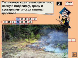 2 Тип пожара охватывающего пни, лесную подстилку, траву и кустарники- иногда