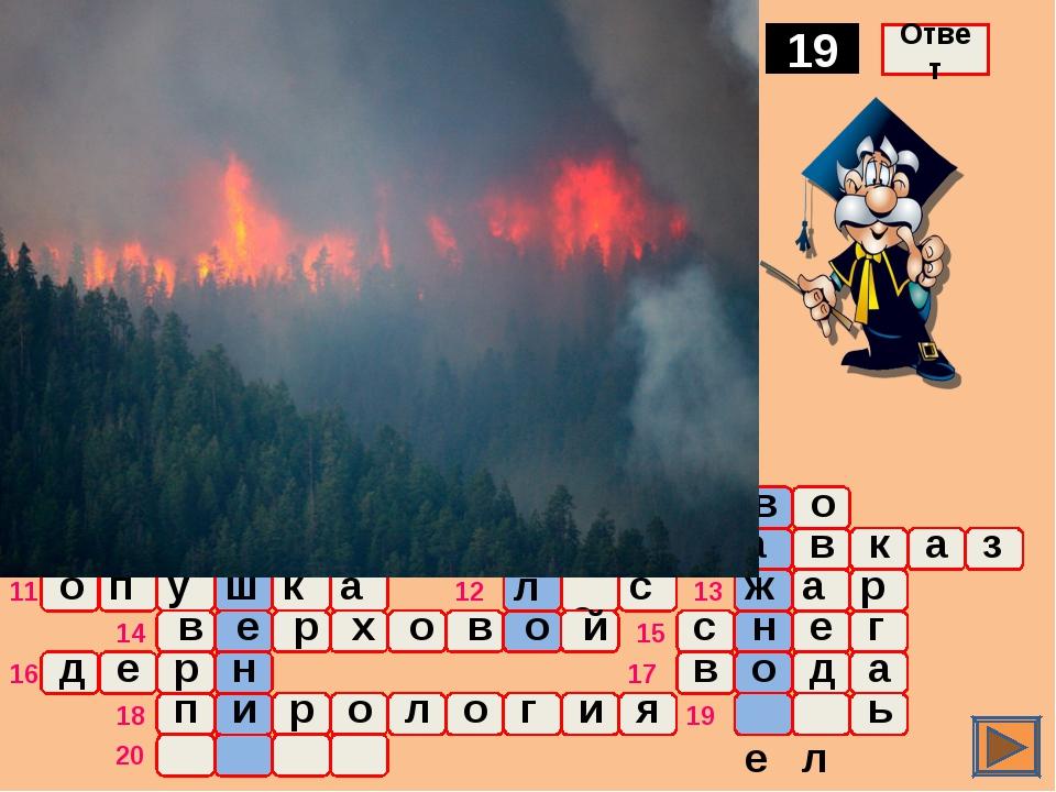 о ж а р Порода хвойных деревьев, среди которых пожар возникает особенно легко...