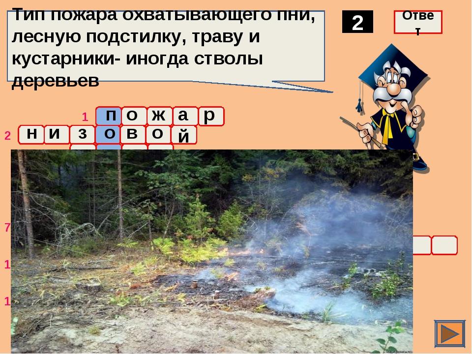 2 Тип пожара охватывающего пни, лесную подстилку, траву и кустарники- иногда...