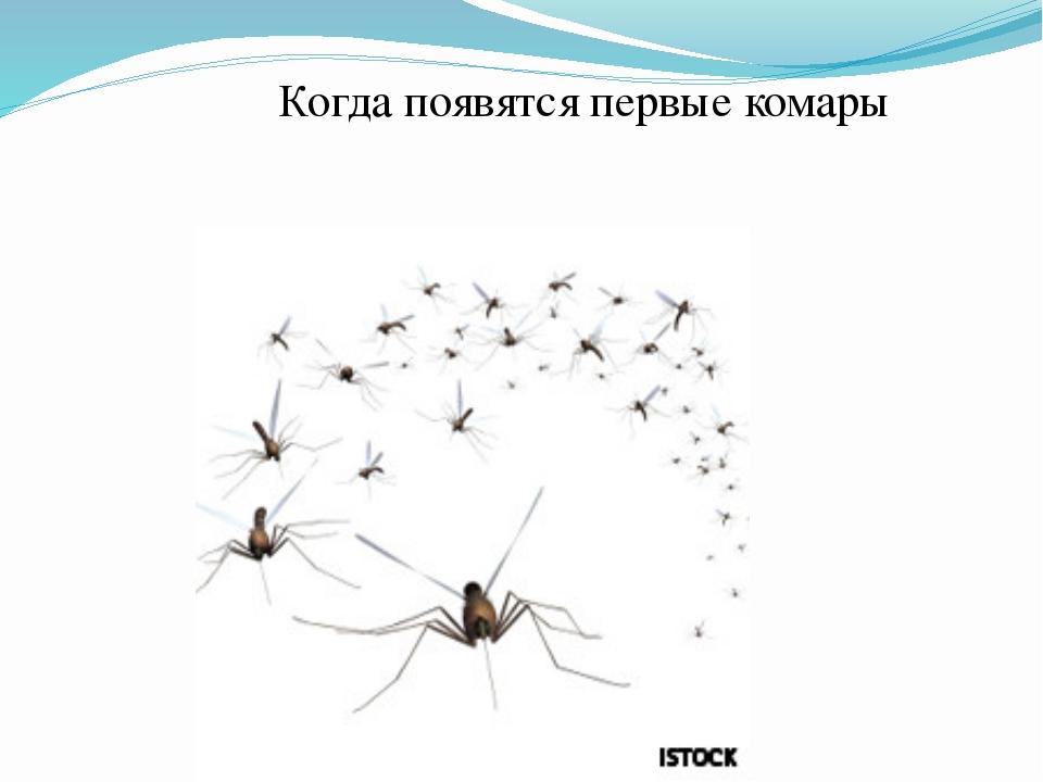 Когда появятся первые комары