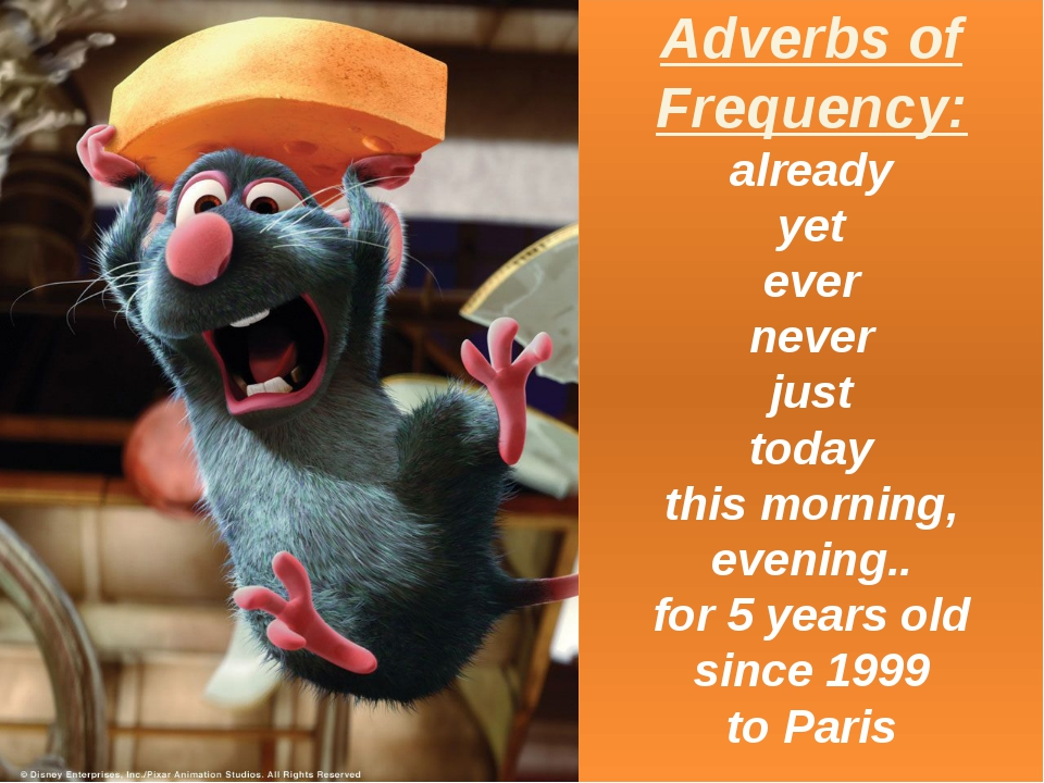 Adverbs of Frequency: already yet ever never just today this morning, evening...