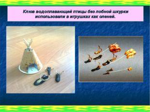 Клюв водоплавающей птицы без лобной шкурки использовали в игрушках как оленей.