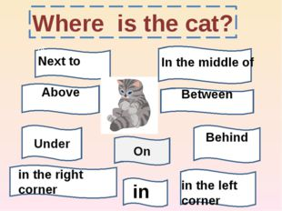 Where is the cat? On of Next to Above Between Under Behind in the right corne