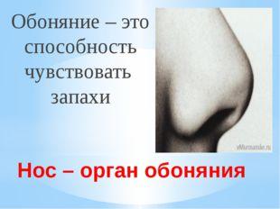 Нос – орган обоняния Обоняние – это способность чувствовать запахи