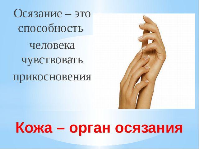 Кожа – орган осязания Осязание – это способность человека чувствовать прикосн...