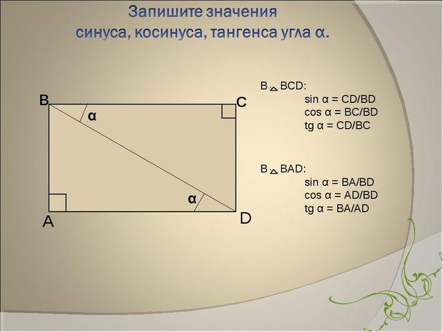 в С А D В BCD: sin α = CD/BD cos α = BC/BD tg α = CD/BC В BАD: sin α = BA...