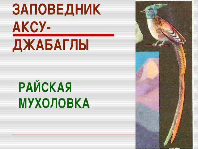ЗАПОВЕДНИК АКСУ- ДЖАБАГЛЫ РАЙСКАЯ МУХОЛОВКА