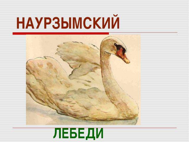 НАУРЗЫМСКИЙ ЛЕБЕДИ