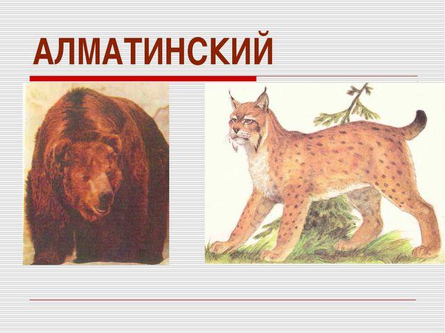АЛМАТИНСКИЙ