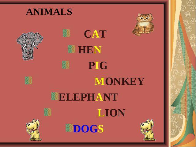 ANIMALS CAT HEN PIG MONKEY ELEPHANT LION DOGS