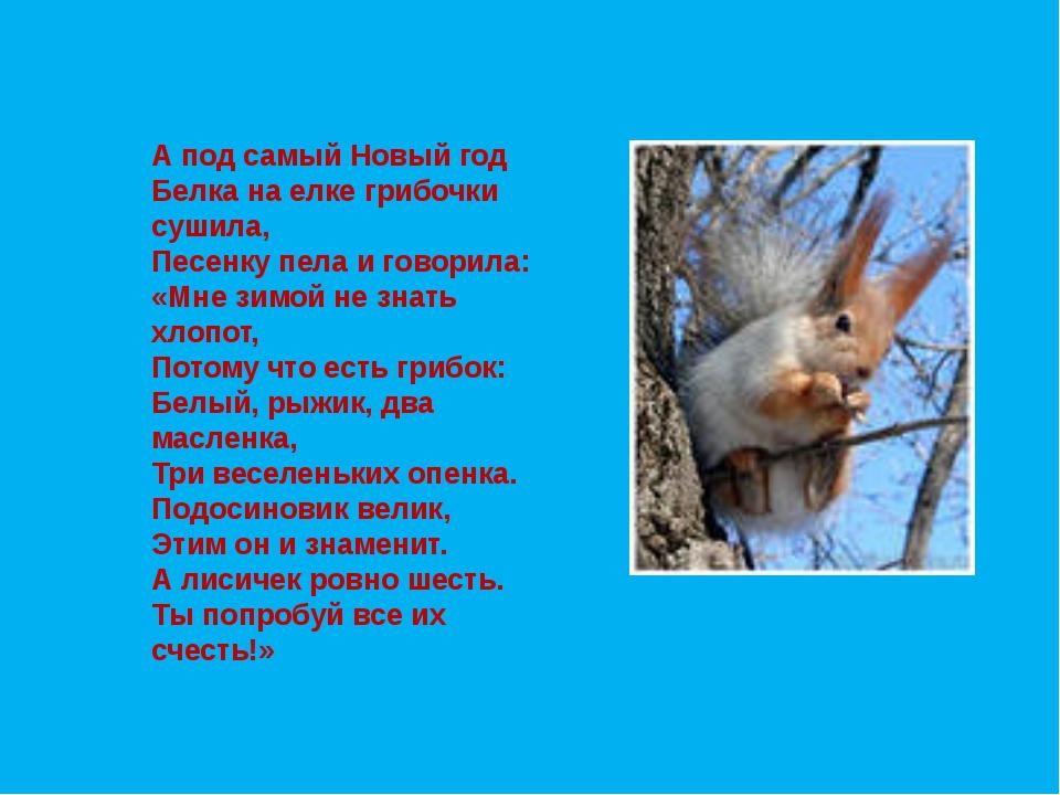 А под самый Новый год Белка на елке грибочки сушила, Песенку пела и говорила...