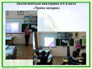 Экологическая викторина в 6 классе «Тропа загадок»