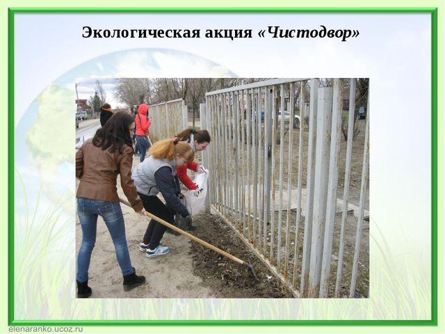 Экологическая акция «Чистодвор»