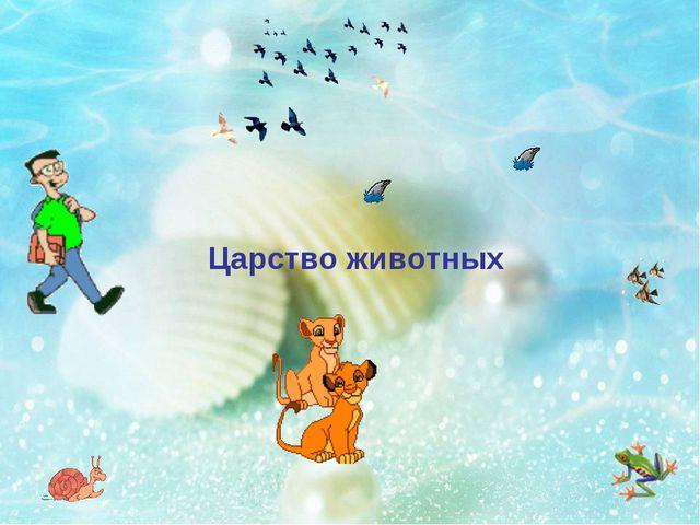 Царство животных