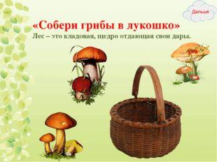 «Собери грибы в лукошко» Лес – это кладовая, щедро отдающая свои дары.