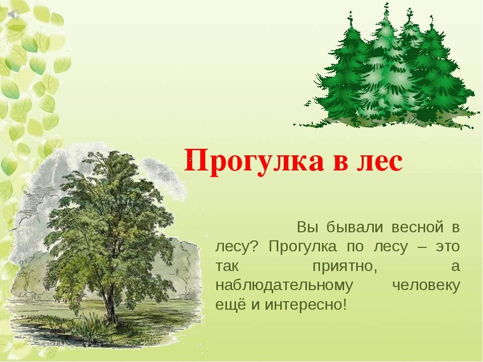 Прогулка в лес Вы бывали весной в лесу? Прогулка по лесу – это так приятно, а...