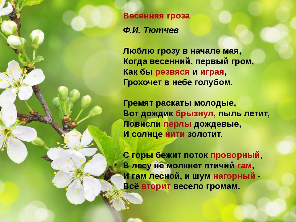 Весенняя гроза Ф.И. Тютчев Люблю грозу в начале мая, Когда весенний, первый г...