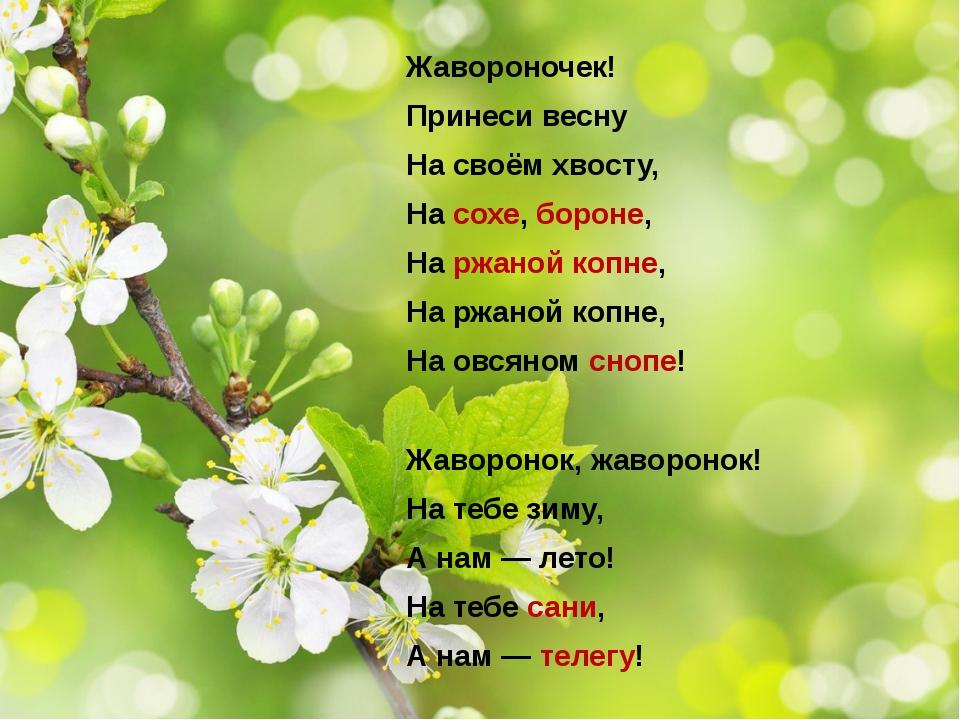 Жавороночек! Принеси весну На своём хвосту, На сохе, бороне, На ржаной копне,...