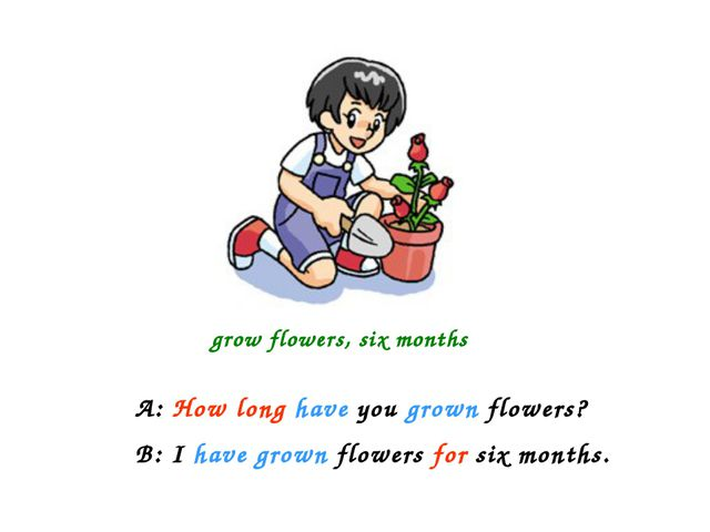 grow flowers, six months A: How long have you grown flowers? B: I have grown...