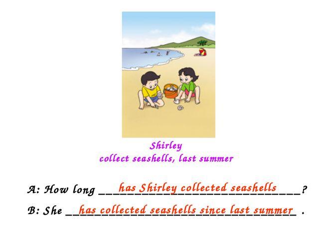 Shirley collect seashells, last summer A: How long __________________________...