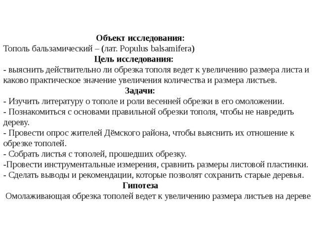 Объект исследования: Тополь бальзамический – (лат. Populus balsamifera) Цель...