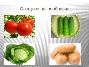 Овощное разнообразие
