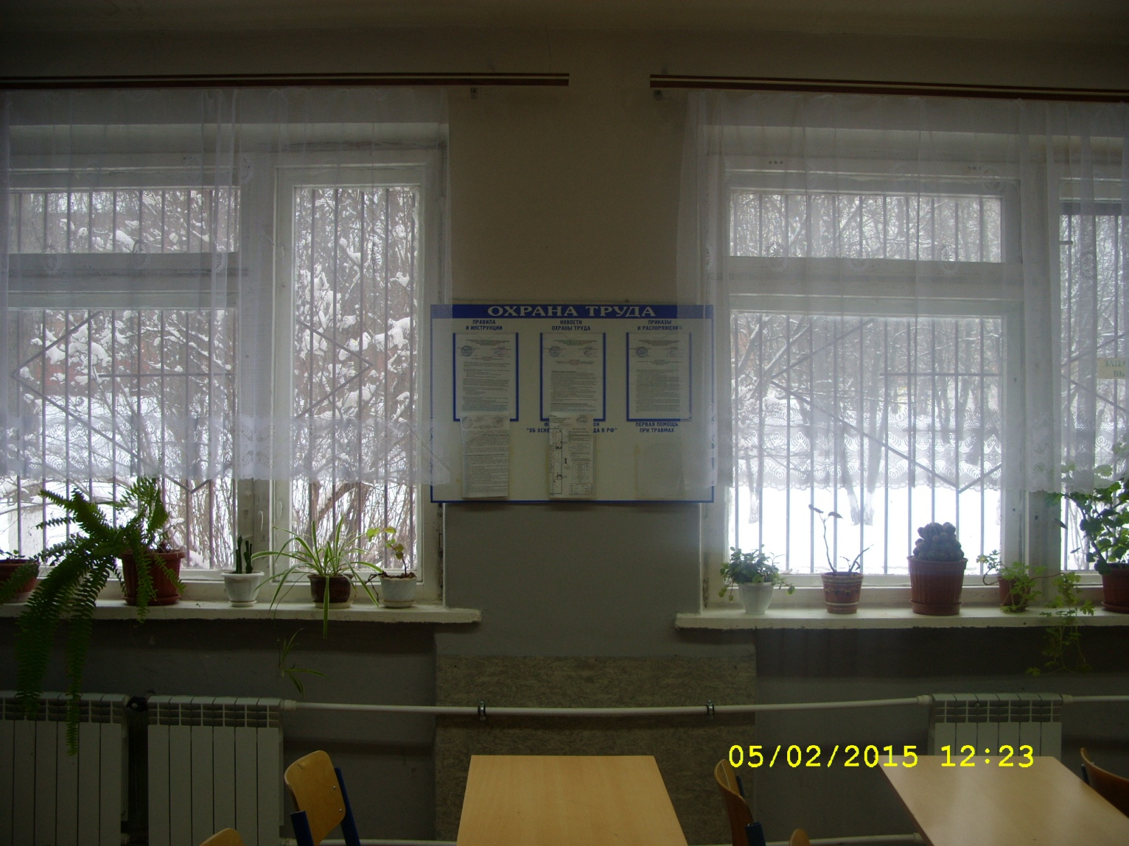 C:\Users\Зинаида\Desktop\Мои последние фото\SS852403.JPG