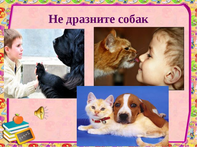 Не дразните собак