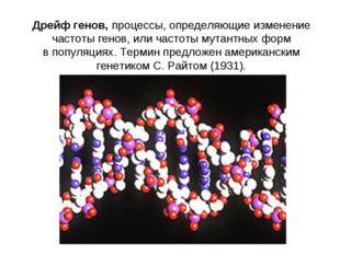 Дрейф генов,процессы, определяющие изменение частоты генов, или частоты мута
