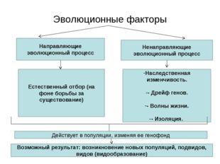 Эволюционные факторы Направляющие эволюционный процесс Ненаправляющие эволюци